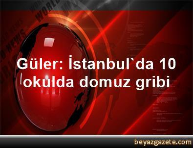 Güler: İstanbul'da 10 okulda domuz gribi