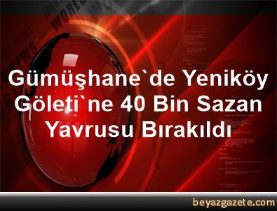 Gümüşhane'de Yeniköy Göleti'ne 40 Bin Sazan Yavrusu Bırakıldı