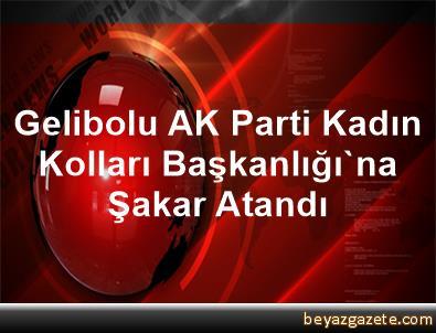 Gelibolu AK Parti Kadın Kolları Başkanlığı'na Şakar Atandı
