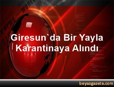 Giresun'da Bir Yayla Karantinaya Alındı