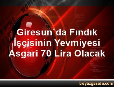Giresun'da Fındık İşçisinin Yevmiyesi Asgari 70 Lira Olacak