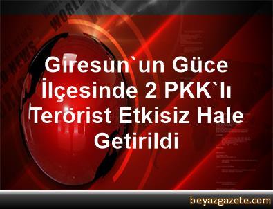 Giresun'un Güce İlçesinde 2 PKK'lı Terörist Etkisiz Hale Getirildi
