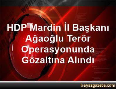 HDP Mardin İl Başkanı Ağaoğlu, Terör Operasyonunda Gözaltına Alındı