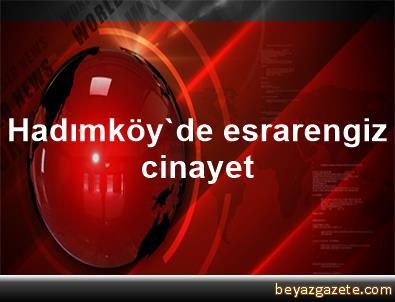 Hadımköy'de esrarengiz cinayet