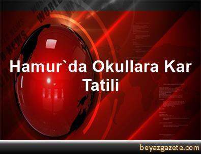 Hamur'da Okullara Kar Tatili