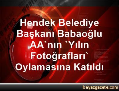 Hendek Belediye Başkanı Babaoğlu, AA'nın 'Yılın Fotoğrafları' Oylamasına Katıldı