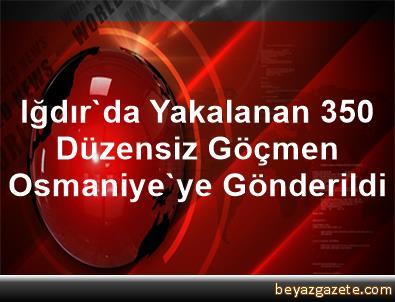 Iğdır'da Yakalanan 350 Düzensiz Göçmen Osmaniye'ye Gönderildi