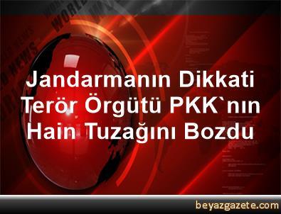Jandarmanın Dikkati Terör Örgütü PKK'nın Hain Tuzağını Bozdu
