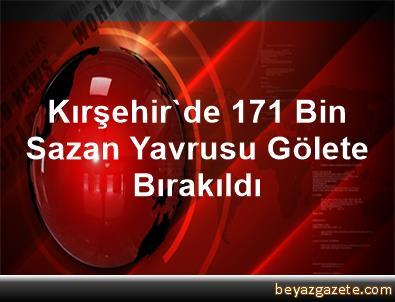 Kırşehir'de 171 Bin Sazan Yavrusu Gölete Bırakıldı