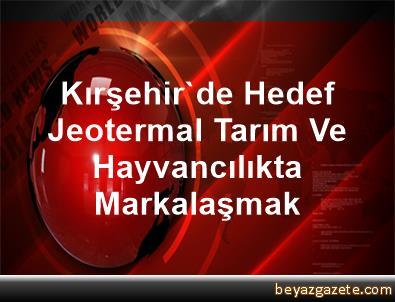 Kırşehir'de Hedef Jeotermal, Tarım Ve Hayvancılıkta Markalaşmak