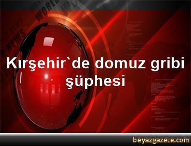 Kırşehir'de domuz gribi şüphesi