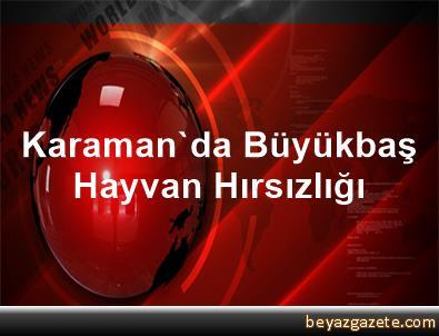 Karaman'da Büyükbaş Hayvan Hırsızlığı