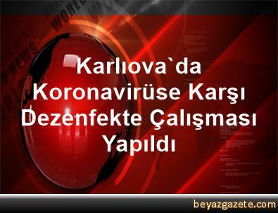 Karlıova'da Koronavirüse Karşı Dezenfekte Çalışması Yapıldı