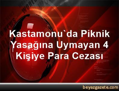 Kastamonu'da Piknik Yasağına Uymayan 4 Kişiye Para Cezası