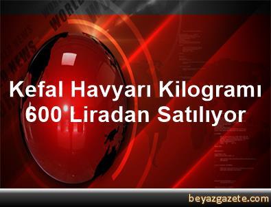 Kefal Havyarı Kilogramı 600 Liradan Satılıyor