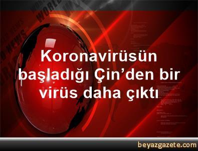 Koronavirüsün başladığı Çin'den bir virüs daha çıktı