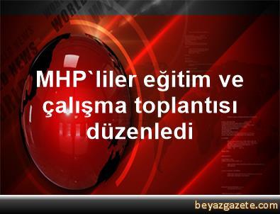 MHP'liler eğitim ve çalışma toplantısı düzenledi