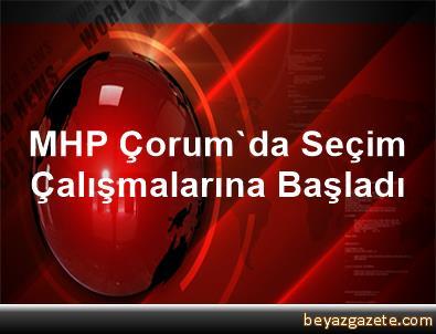 MHP Çorum'da Seçim Çalışmalarına Başladı