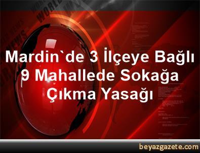 Mardin'de 3 İlçeye Bağlı 9 Mahallede Sokağa Çıkma Yasağı