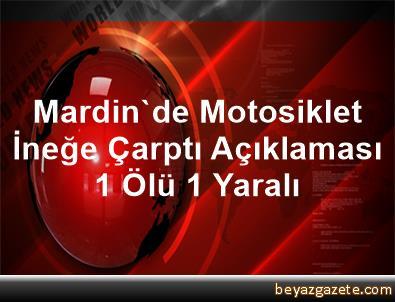 Mardin'de Motosiklet İneğe Çarptı Açıklaması 1 Ölü, 1 Yaralı