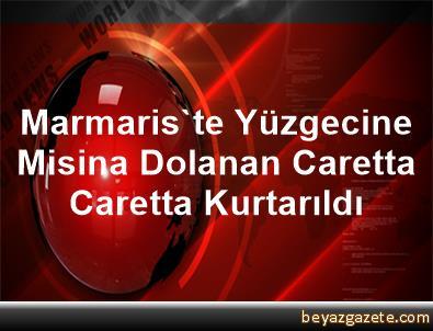 Marmaris'te Yüzgecine Misina Dolanan Caretta Caretta Kurtarıldı