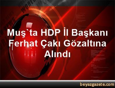 Muş'ta HDP İl Başkanı Ferhat Çakı Gözaltına Alındı