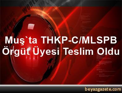 Muş'ta THKP-C/MLSPB Örgüt Üyesi Teslim Oldu