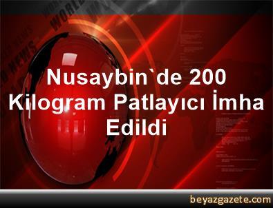 Nusaybin'de 200 Kilogram Patlayıcı İmha Edildi