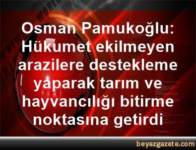 Osman Pamukoğlu: Hükumet ekilmeyen arazilere destekleme yaparak tarım ve hayvancılığı bitirme noktasına getirdi