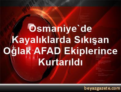 Osmaniye'de Kayalıklarda Sıkışan Oğlak, AFAD Ekiplerince Kurtarıldı