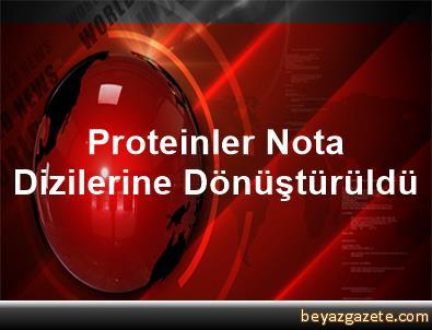Proteinler Nota Dizilerine Dönüştürüldü