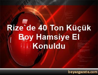 Rize'de 40 Ton Küçük Boy Hamsiye El Konuldu