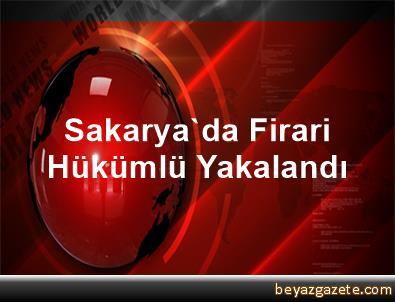 Sakarya'da Firari Hükümlü Yakalandı