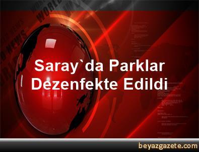 Saray'da Parklar Dezenfekte Edildi