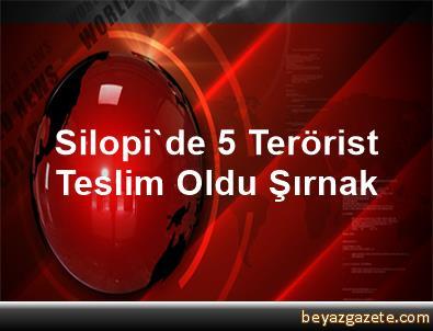 Silopi'de 5 Terörist Teslim Oldu Şırnak