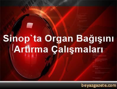 Sinop'ta Organ Bağışını Artırma Çalışmaları