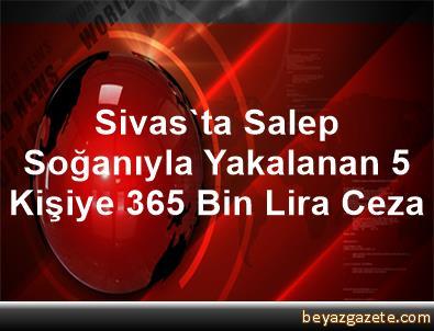 Sivas'ta Salep Soğanıyla Yakalanan 5 Kişiye 365 Bin Lira Ceza
