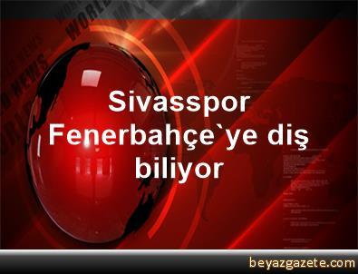 Sivasspor, Fenerbahçe'ye diş biliyor