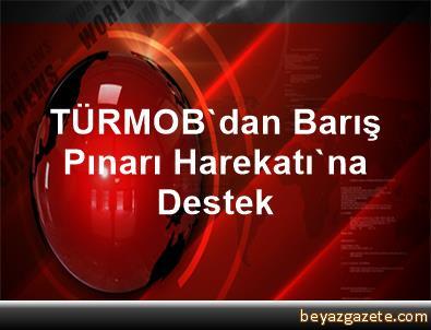 TÜRMOB'dan Barış Pınarı Harekatı'na Destek