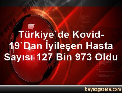 Türkiye'de Kovid-19'Dan İyileşen Hasta Sayısı 127 Bin 973 Oldu