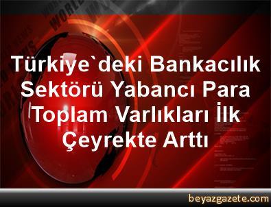 Türkiye'deki Bankacılık Sektörü Yabancı Para Toplam Varlıkları İlk Çeyrekte Arttı