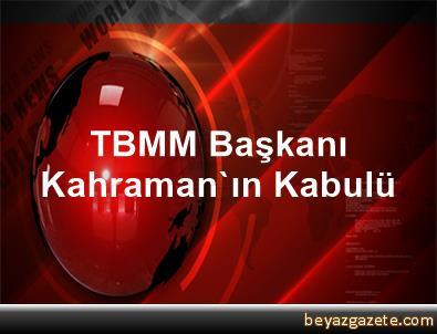 TBMM Başkanı Kahraman'ın Kabulü