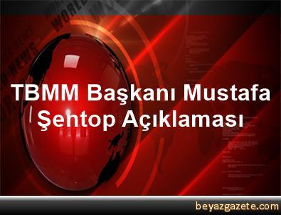 TBMM Başkanı Mustafa Şentop Açıklaması