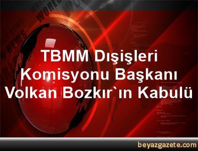 TBMM Dışişleri Komisyonu Başkanı Volkan Bozkır'ın Kabulü