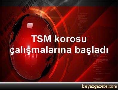 TSM korosu çalışmalarına başladı