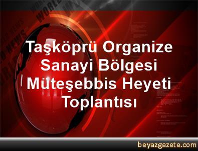 Taşköprü Organize Sanayi Bölgesi Müteşebbis Heyeti Toplantısı