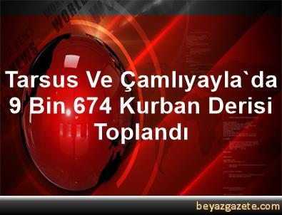 Tarsus Ve Çamlıyayla'da 9 Bin 674 Kurban Derisi Toplandı