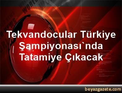 Tekvandocular Türkiye Şampiyonası'nda Tatamiye Çıkacak