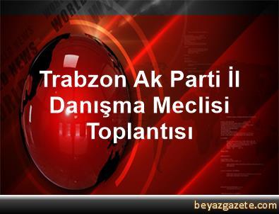 Trabzon Ak Parti İl Danışma Meclisi Toplantısı