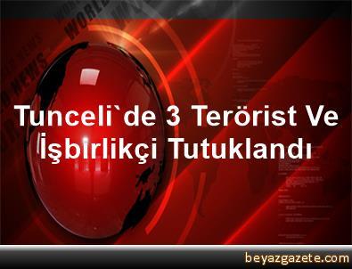 Tunceli'de 3 Terörist Ve İşbirlikçi Tutuklandı